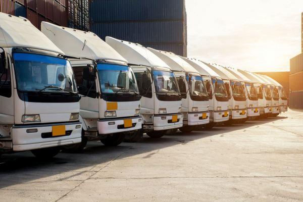 logistics consultancy